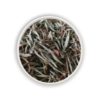 Maconha Brava (Zornia latifolia) Dried Leaves