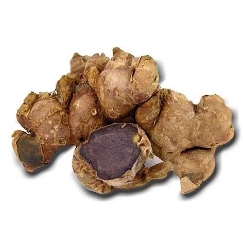 Thai Black Ginger (Kaempferia parviflora)